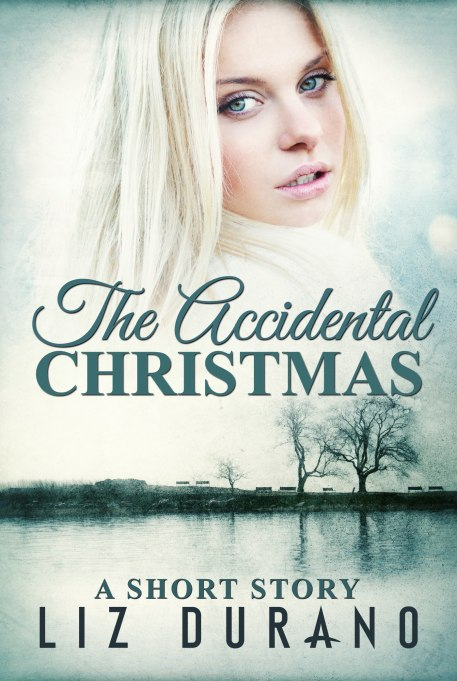 The-Accidental-Christmas-Generic